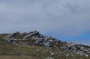 Falklands - Harriet