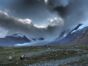 The Pervis Glacier